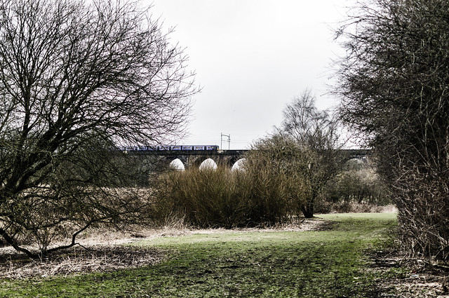 Train crossing viaduct