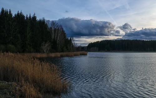belarus minsk region lake nature landscape беларусь задомля