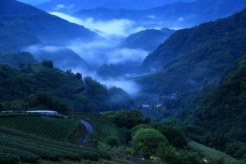 travel pink light mountain color fog comfortable night clouds creek sunrise canon relax landscape dawn spring view cloudy vibrant taiwan trails fresh valley rails rays nightview dawning 夜景 idyllic teagarden 風景 daybreak hillwood seaofclouds vigor 雲海 晨曦 pinglin 日出 vitality 耶穌光 茶園 landscapephotography colortemperature teaplantations 坪林 霧 energetic 清晨 teafield 北勢溪 雲霧 山景 ruralscenery 山谷 芒花 晨景 嵐 晨昏 山色 南山寺 色溫 霞光 彩霞 風景攝影 台灣風景 vehicletrack 新北市 newtaipeicity 朝氣 晨霞 谷景 樟空子 舒爽 aromaoftea