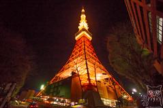 Tokyo Tower!