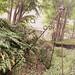 view_APMOA_ProjectArchNo9_panorama_garden_01