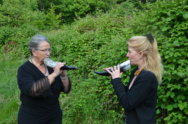insieme: Storia Sonora delle Centovalli Musikalische Performance / Performance musicale (14-062)