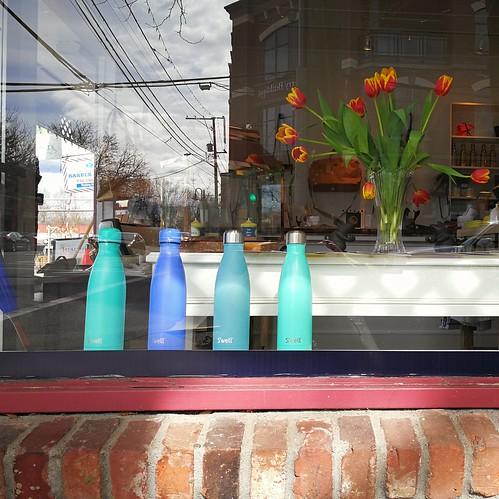window shopping display reflection squareformaturban bricks flowers bottles blue teal