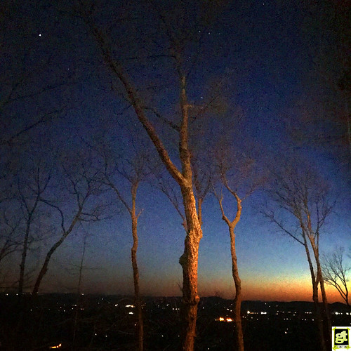 blue dark scenic sunset stars trees