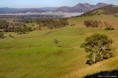 view australia gloucester nsw midnorthcoast ruralview rurallandscapes buckettsway buckettsrange mogranilookout