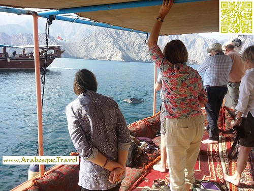 Dolphin watching - Musandam Oman - During 16 days friends holiday 2013 | by Arabesque Travel Oman