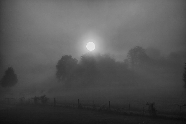 Misty Sunrise in B&W