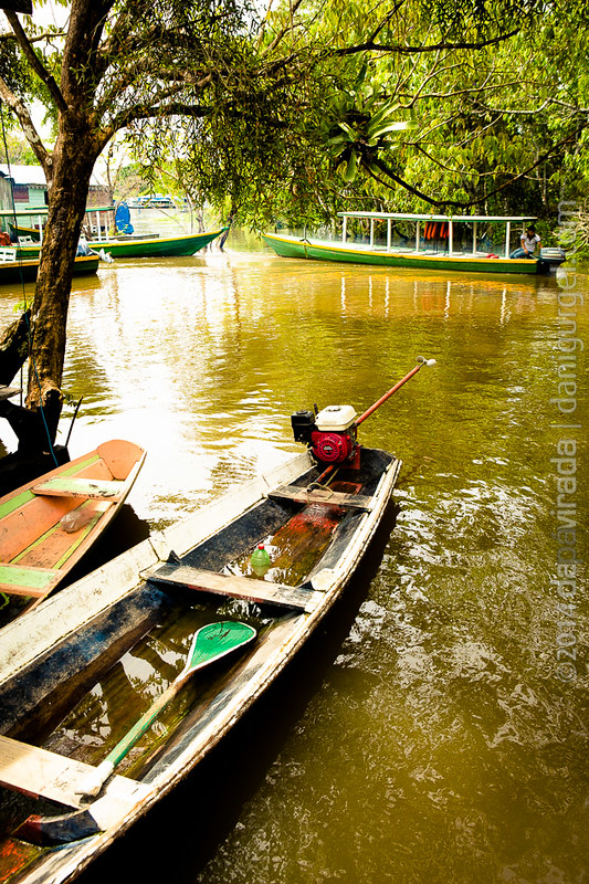 Rio Negro. Manaus, AM, BR