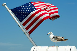 God bless America   by Pai Shih