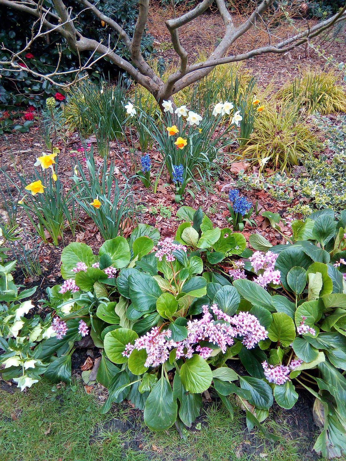 Osterley Park Winter Gardens