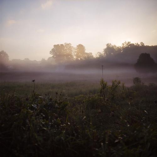 morning mist 120 film field fog sunrise dawn kodak iso400 tennessee birdhouse september portra400nc dayton 2010 colornegative 6x6cm rolleicordiii
