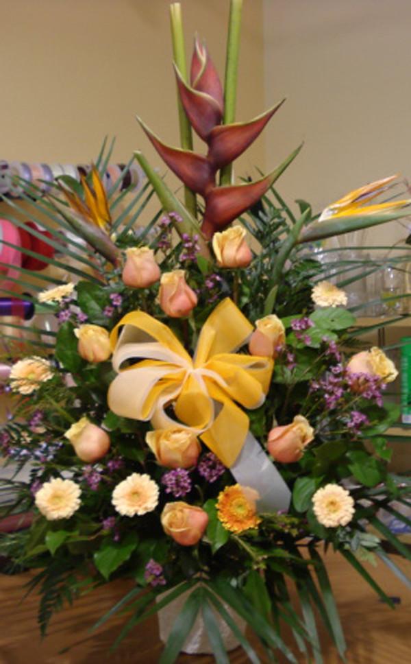 Farah Florist W-A-1.  $120