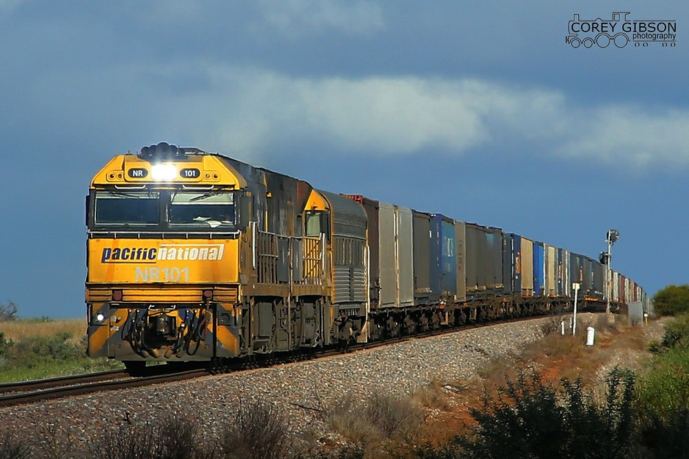 NR101 & NR110 with the 7MP7 near Redhill by Corey Gibson
