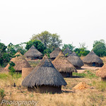 Small Thatched Village Nigeria