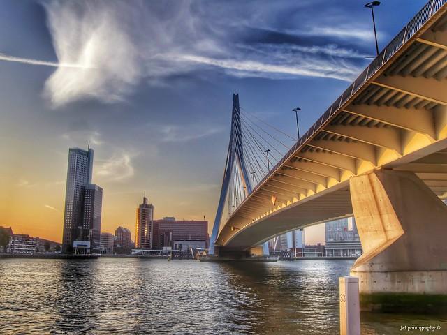 Rotterdam - Erasmusbridge in gold HDR
