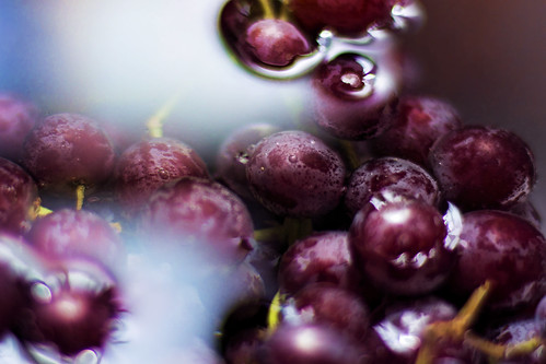 Purple Grapes | by dbnunley