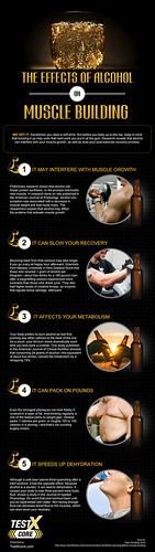 TestX Core: The Effects of Alcohol on Muscle Building