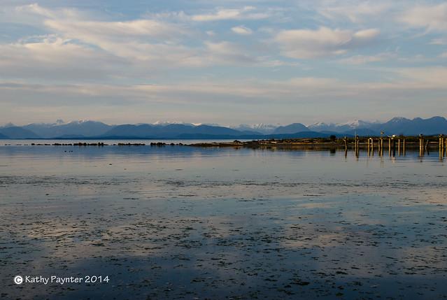 Oyster Bay Calm