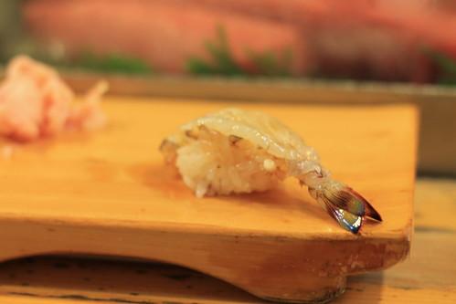 Shrimp | by benyu235