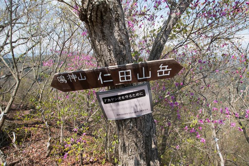 20160430-鳴神山-0227.jpg