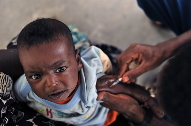 Malaria Vaccine   Image Courtesy: tpsdave, Released into the…   Flickr