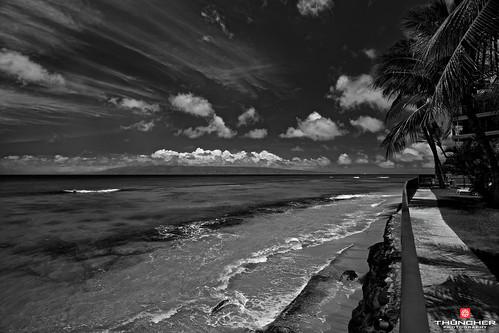 sky bw beach nature monochrome clouds landscape outdoors island hawaii blackwhite nikon scenic maui palmtrees pacificocean tropical fullframe fx lahaina coralreef d800 waterscape kaanapali honokawai nikond800 haleonoloa nikkorafs1635mmf4gedvr