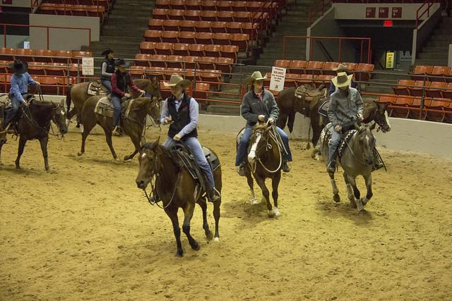 Houston Rodeo_116