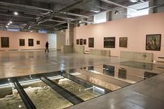 El Museo de Arte Iberoamericano abre sus puertas