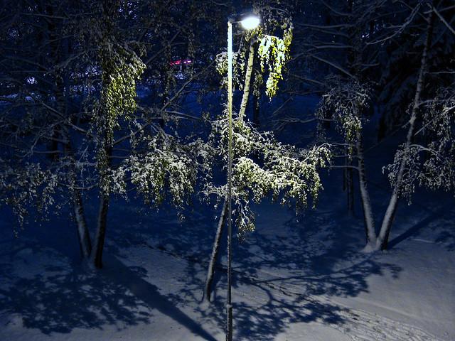Night snowfall. Ночной снегопад. 20161110 073153 2434____
