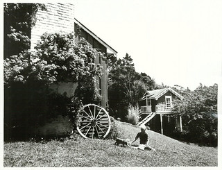 A Bougainvillea covered house in the Waitakeres. The building on the right was formerly the Oratia Post Office