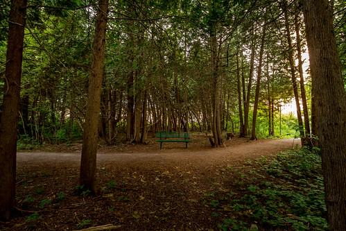bench riverwalk carletonplace