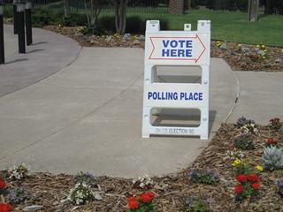 Election | by nodigio