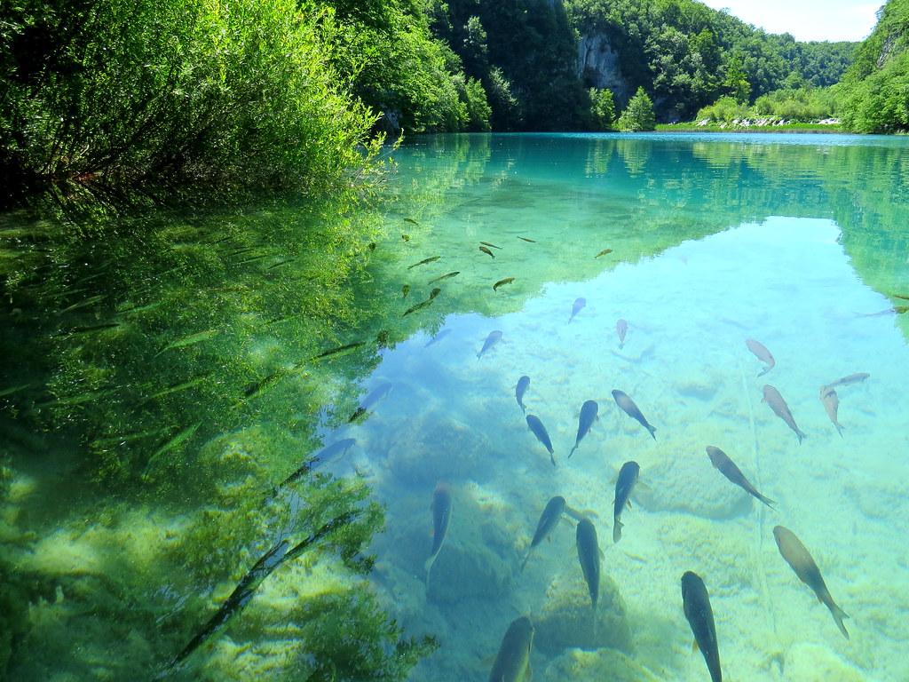 Plitvice Lakes - Kaluderovac Lake