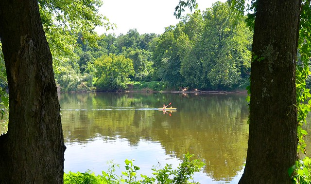 Paddling at James River State Park