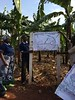 Supervision mission in the Kagera basin (January 2014) by FAO of the UN