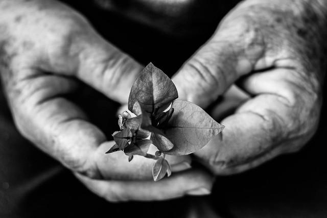 In your hands...Em suas mãos...