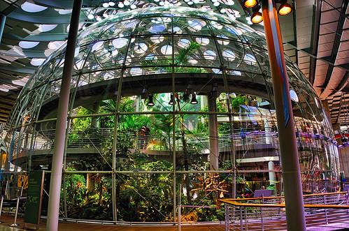 Osher Rainforest | by ericwagner