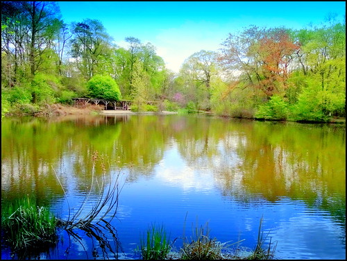 newyork reflection brooklyn image prospectpark dmitriyfomenko spring72014