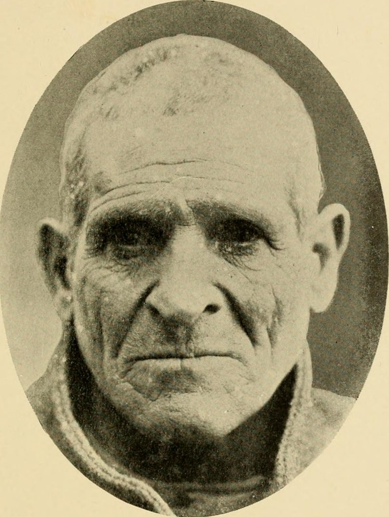 Image From Page 316 Of Criminal Man According To The Cla Flickr
