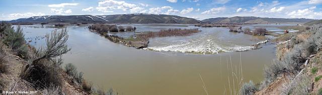 Bear River Flooding