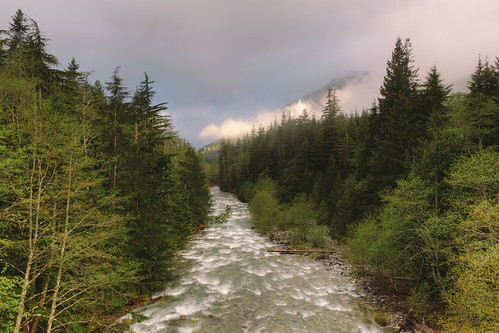 nature landscape clouds fog river water trees forest canon pnw scenic pacificnorthwest cloudy canoneos5dmarkiii canonef2470mmf28lusm washington