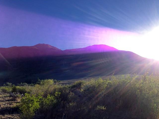 Purple Mountains Inadvertent Majesty