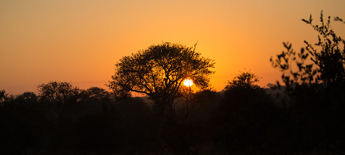 africa sunrise southafrica south clear greater kruger pondoro balule