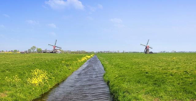 The Doesmolen and Kalkmolen like twins in the rural Dutch landscape