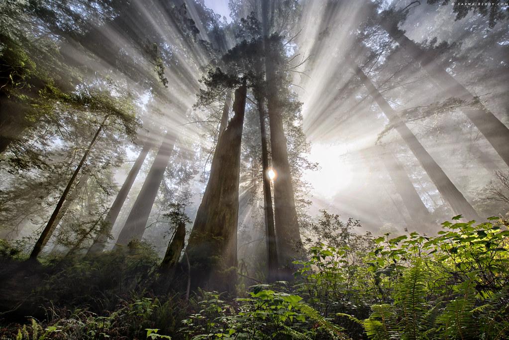 Divine rays ( Published,, Popular Photography, Landscape photography Magazine, and Outdoor Photographer magazine)