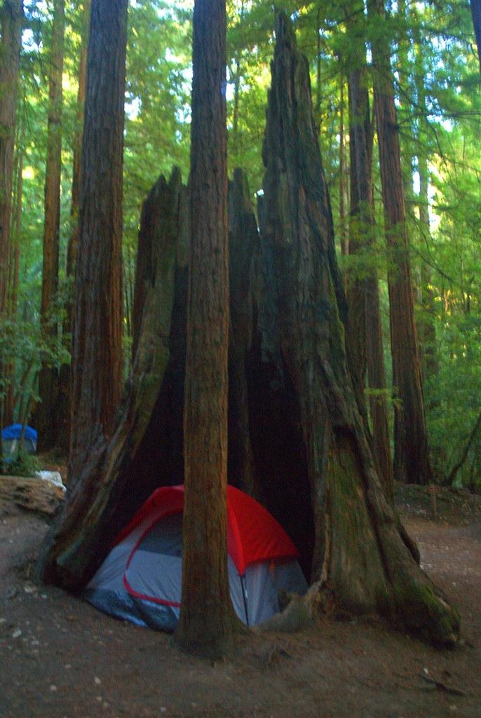 Big Basin Campground | Big Basin State Park is a popular cam