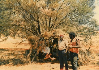 Hunting camp with wiltsja (hut) under a mulga tree