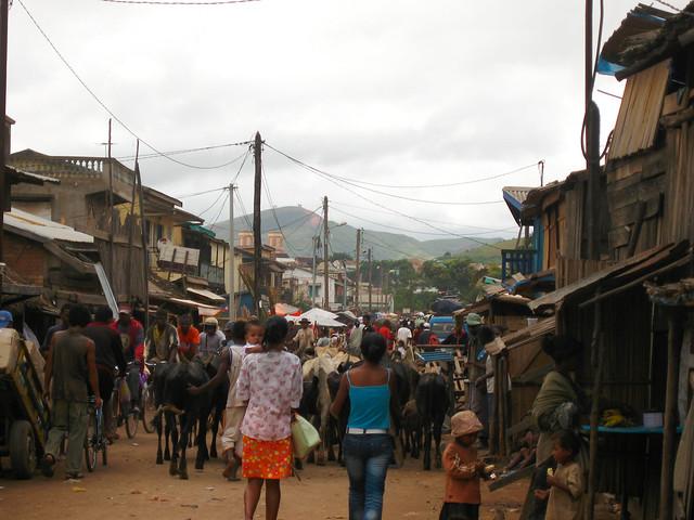 Madagascar2010 - 13