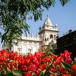 Jaswant Thada and its garden, Jodhpur, India ジョードプル ジャスワント・タダとブーゲンビリアの咲く庭