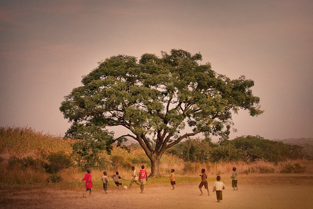 Children playing football in Africa under a large tree